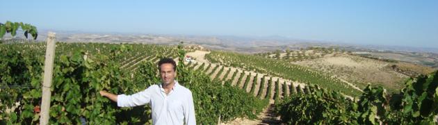 Azienda vinicola Tramontana