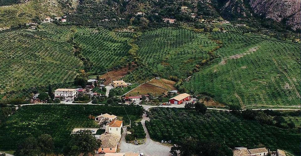 Azienda Agricola Barone G. R. Macrì