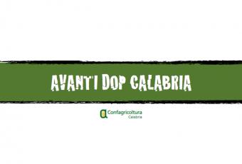 Confragricoltura dice si alla dop Calabria