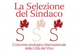 7 medaglie alla Calabria alla Selezione del Sindaco