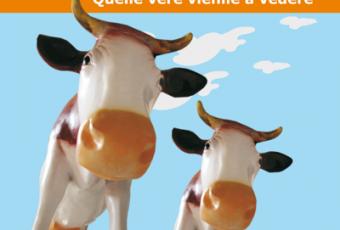 Andare in Sila per vedere le mucche