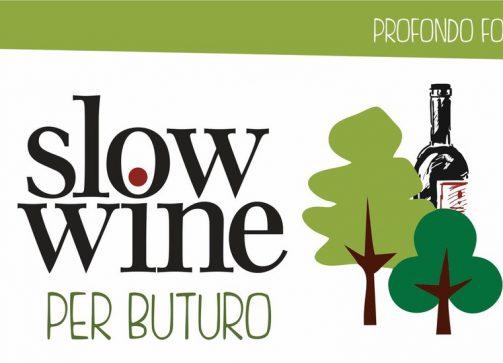 Slow Wine per Buturo. Degustazione in Sila per acquistare un defibrillatore